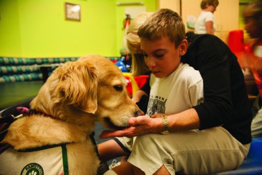 Terápiás kutya egy kisfiúval